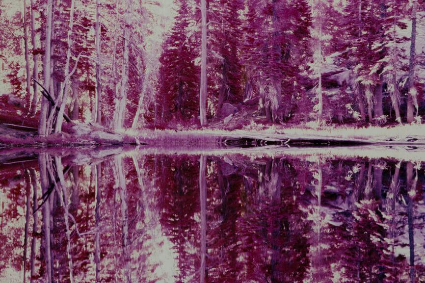 Desolation Wilderness, CA (shot on Kodak EIR color infrared slide film)