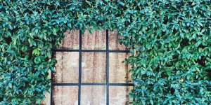 Verborgene Schönheit: Fortuny auf der Giudecca